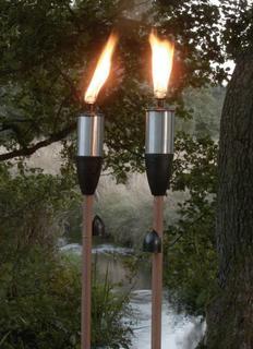 Факел в расцвете сил