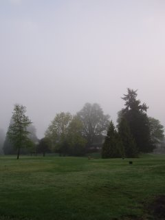 Golf Course - misty morning