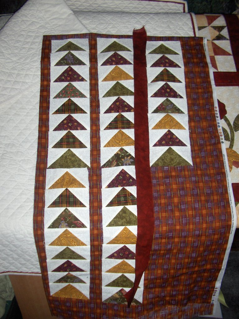 Sunshower Quilts Quilting tod # Sunshower Goes_064641