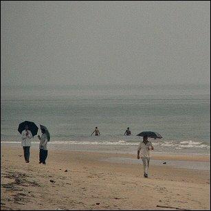 Umbrellas on Goa beach