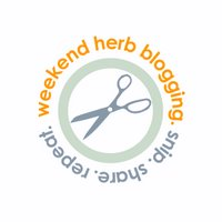 Weekend Herb Blogging Recaps:  Second Year