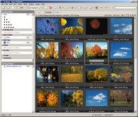 New Media Pro software