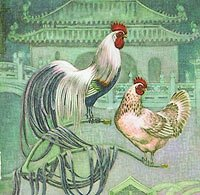 Illustration of a Pheonix breed rooster and hen