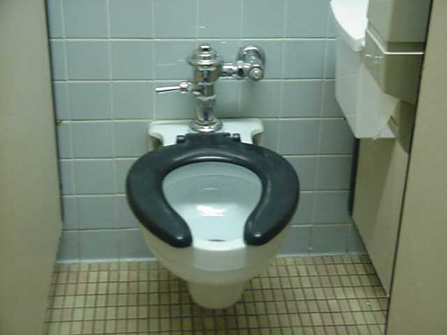 Busty toilets #4