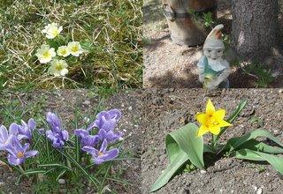 spring (onemorehandbag)