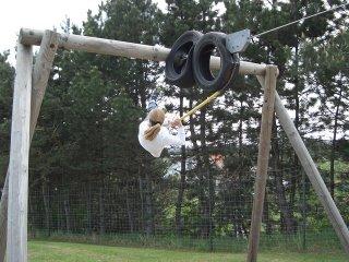 swinging (onemorehandbag)