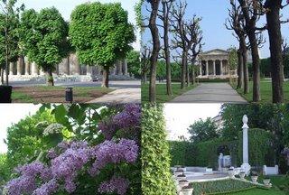 volksgarten in spring (onemorehandbag)