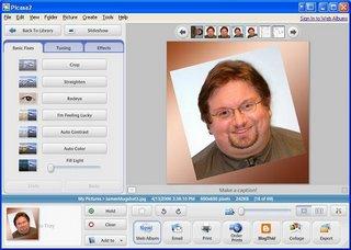 Picasa screenshot main interface