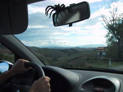 Alla guida. Estate 2005 - Campagna marchigiana