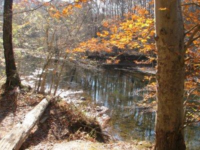 Hemlock Overlook in Northern Virginia