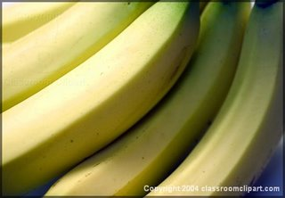 image of a bunch of bananas for bugtong