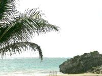 Playa Palladium