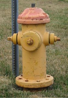 Big fire hydrant