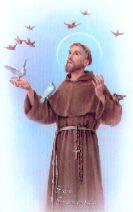 Vida de St.Francesc