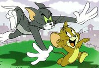 tom-jerry
