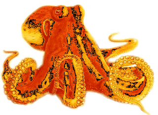 polvo cor de laranja