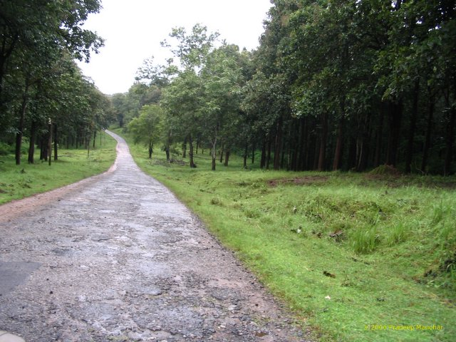 Runway to Heaven - Nagarhole Sanctuary Park