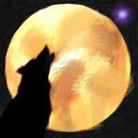 wolf's dream