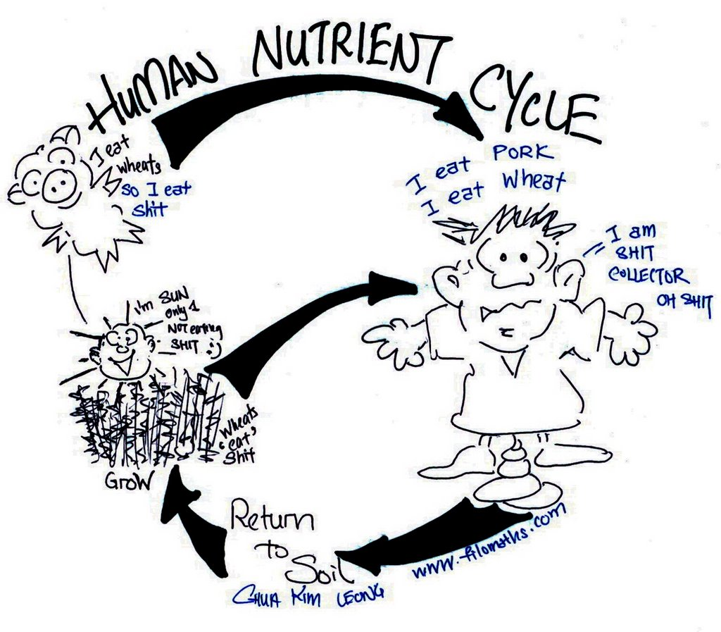 nutrient cycle decomposers pictures to pin on pinterest