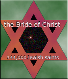 The Bride Side of Life Jewish Star