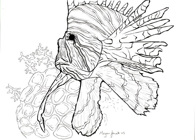 lionfish coloring page