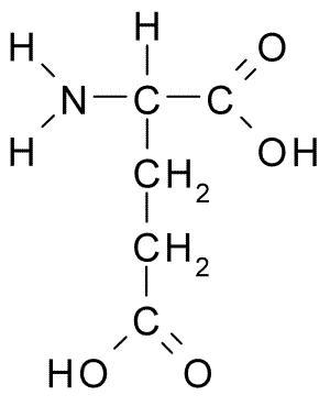 molecules glutamic acid