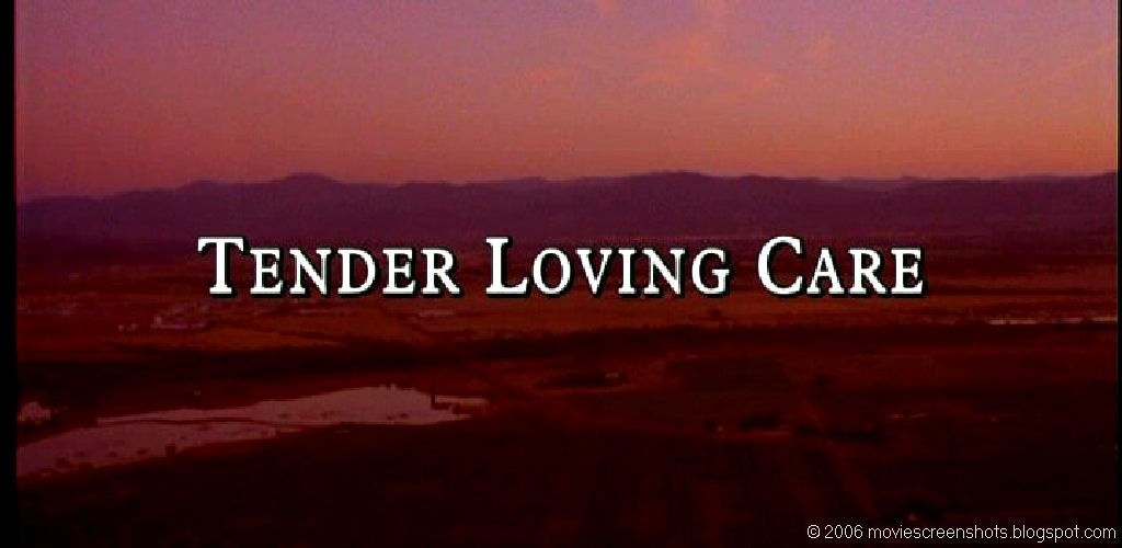 Tender loving care - это что такое tender loving care