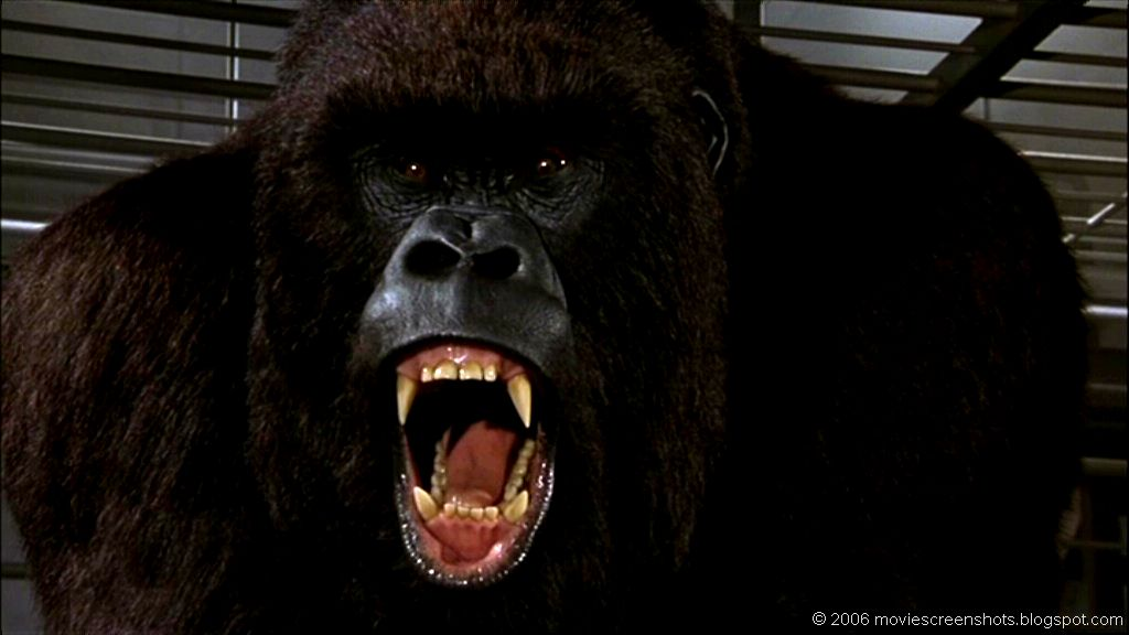 vagebonds movie screenshots mighty joe young 1998