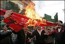 Radicals, Muslims, GWOT