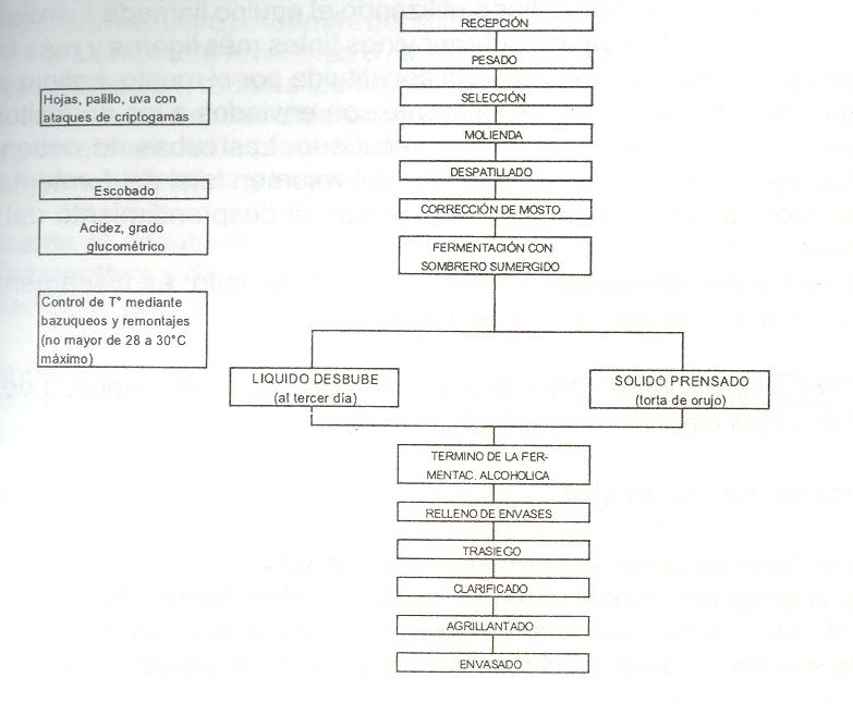 Tacna sus vinos un producto de agroexportacin diagrama de flujo del vino blanco y tinto ccuart Gallery