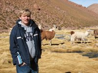 Kent with llamas in northern Chile