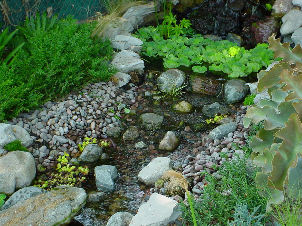 My so called pond life pond edging for Garden pond edging