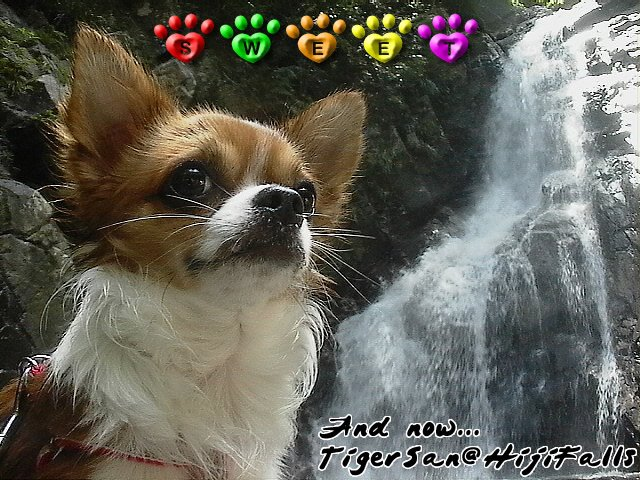 From TigerSan's PhotoBlog: And now... Tigersan at Hiji Falls (AKA: Fiji Falls)