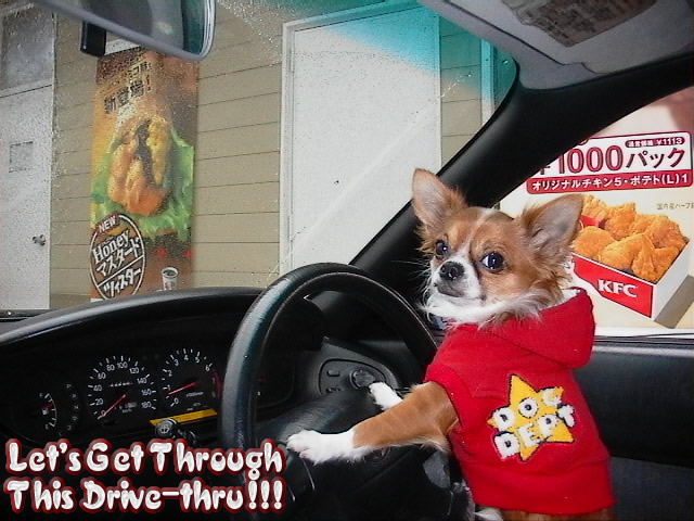 From TigerSan's PhotoBlog: Let's get through this drive-thru!