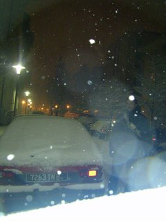 Insieme sotto la neve a Trento, gennaio 2005