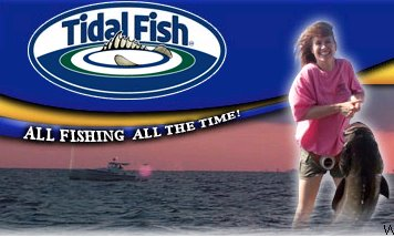 Adventures in the chesapeake tidal fish board for Tidal fish chesapeake
