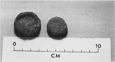 Peyote buttons recovered from a rock shelter in the lower Pecos River region