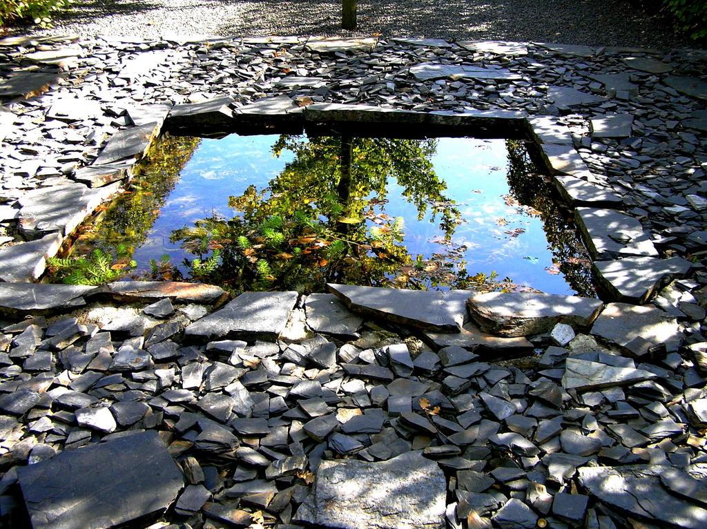 curieux jardin eau miroir dans un autre. Black Bedroom Furniture Sets. Home Design Ideas