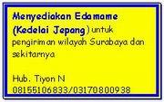Sementara khusus SBY dan sekitar