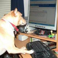 Max Blogging...