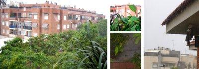 Pincha la imagen para ampliarla: lluvia en Murcia en agosto