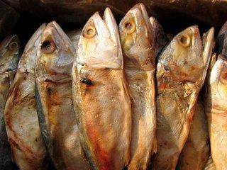 dried-fish - Buwad - Pulong Bisaya