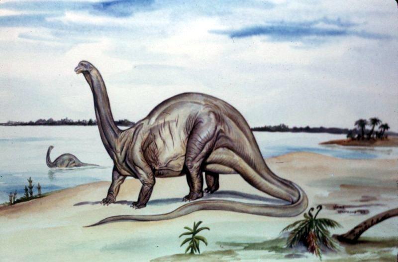 динозавр который ловит косточку