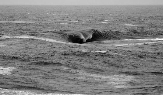Surf In OregonYear One