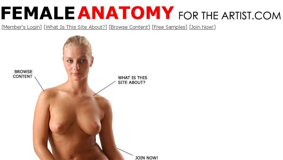 ANATOMIA FEMENINA PARA ARTISTAS: imágenes de modelos para artistas ...