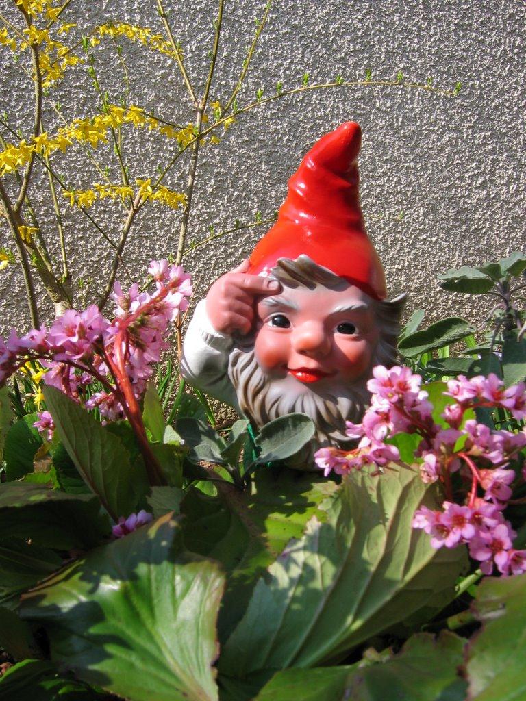 Cergipontin le nain de jardin garden dwarf - Nain de jardin amelie poulain ...
