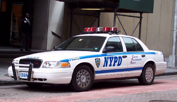 Police Car Model Ford