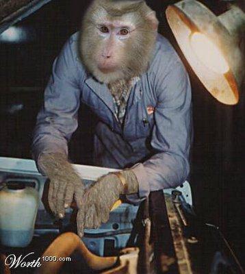 Grease Monkey Car Wash