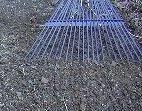 garden rake smoothing the soil