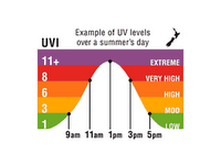 Daily UVI bellcurve.